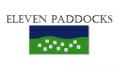 2006 Eleven Paddocks Shiraz
