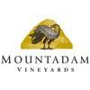 2008 Mountadam High Eden Chardonnay