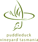 2008 Puddleduck Cabernet Sauvignon