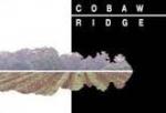 2013 Cobaw Ridge Chardonnay